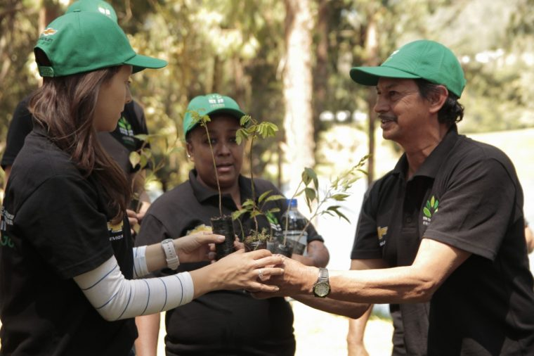 Chevrolet Columbia tree planting