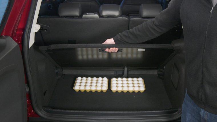 Ford EcoSport trunk cargo shelf