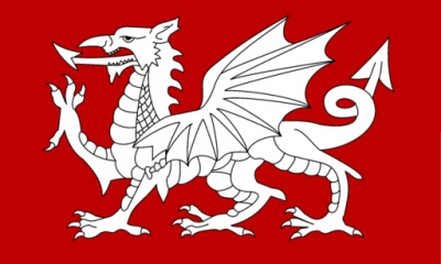 White dragon flag wyvern English creature design