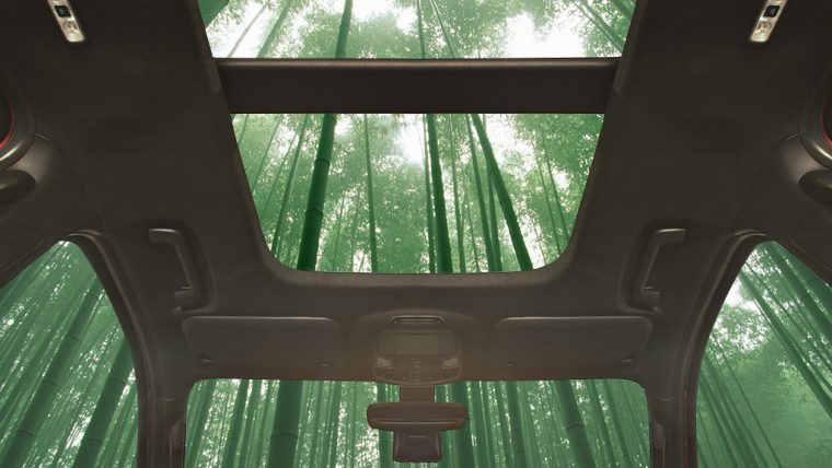 Potentially Bamboo Vehicle Interiors