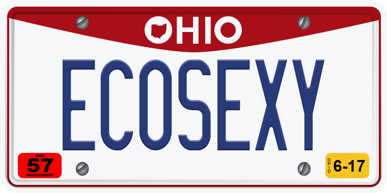 TNW Funny hilarious vanity license plate messages ECOSEXY