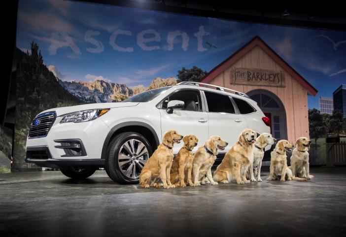 2019 Subaru Ascent reveal