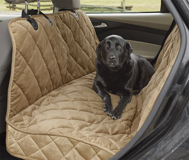 5 Life-Changing Car Accessories Every Dog Owner Should Have | The ...