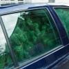 Tips on How to Transport a Christmas Tree