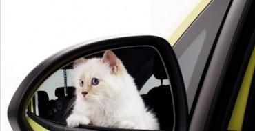 Cats In Cars: Opel's 2015 Calendar Stars the Purr-fect Model
