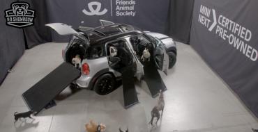 MINI K-9 Showroom Helps Raise Money for Animal Sanctuary