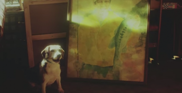 Japanese Toyota Sienta Commercial Features Clever Canine