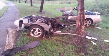 1986 Nissan 300ZX Viciously Mauled by Savage Wild Tree