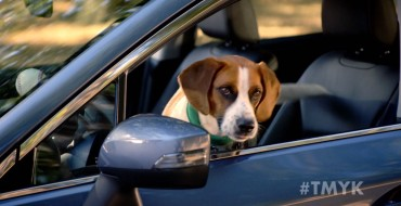 "Subaru's ""The More You Know"" Video Stars Andy Cohen and His Dog"