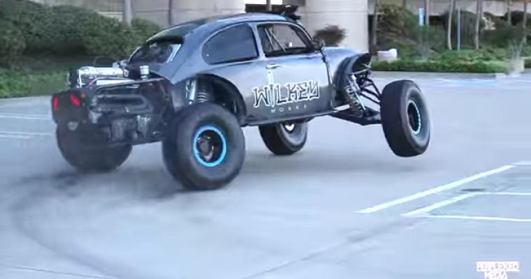 Wild VW Beetle Terrorizes San Diego