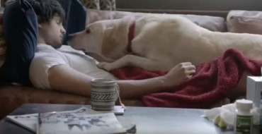 [WATCH] Budweiser's Dog-Filled Anti-Drinking-and-Driving Ad Still Hits Home