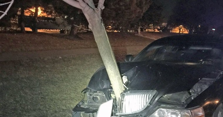Drunk Driver Reminds Us All Why We Shouldn't Drink and Drive as She Takes Tree For a Ride