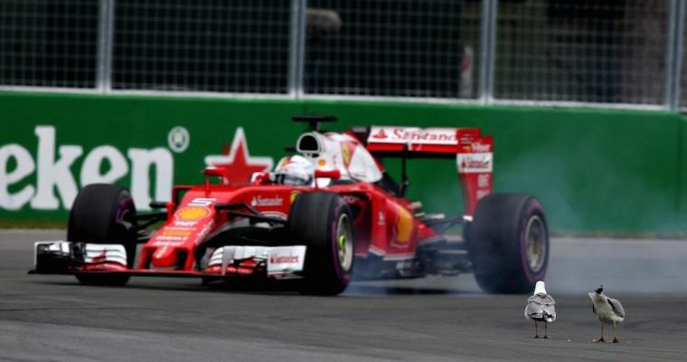 2016 Canadian Grand Prix Recap: Hamilton Wins, Vettel Avoids Seagulls
