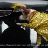 GMC Creates YouTube Ads That Shamelessly Target Popular Search Terms