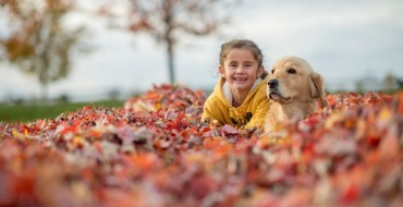 Tips for Looking at Colorful Fall Leaves Without Driving Dangerously