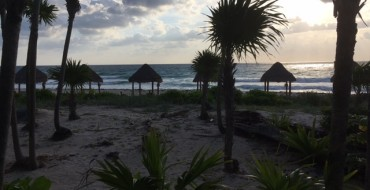 The View from a Mexican Ambulance