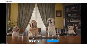 I'm Kind of Digging My Personalized Subaru Thank You Video