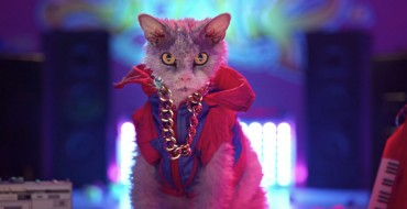 New Honda Ad Stars Pompous Albert, Which is a Famous Internet Cat, I Guess