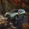 A First Look at the 2019 Subaru Forester