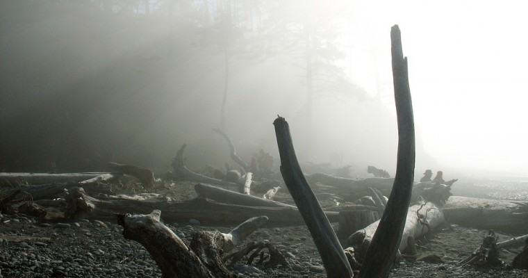 Road Trip Pit Stops: 5 Haunted Destinations in Washington