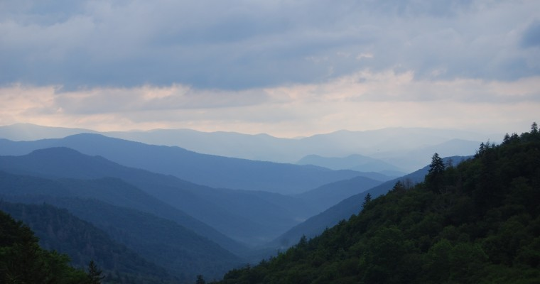 Road Trips for Nature Lovers: A Visitor's Guide to Great Smoky Mountains National Park