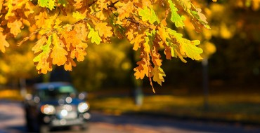 3 New England Road Trips to Take This Thanksgiving Break