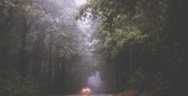 Why Aren't Fog Lights Standard on New Cars?