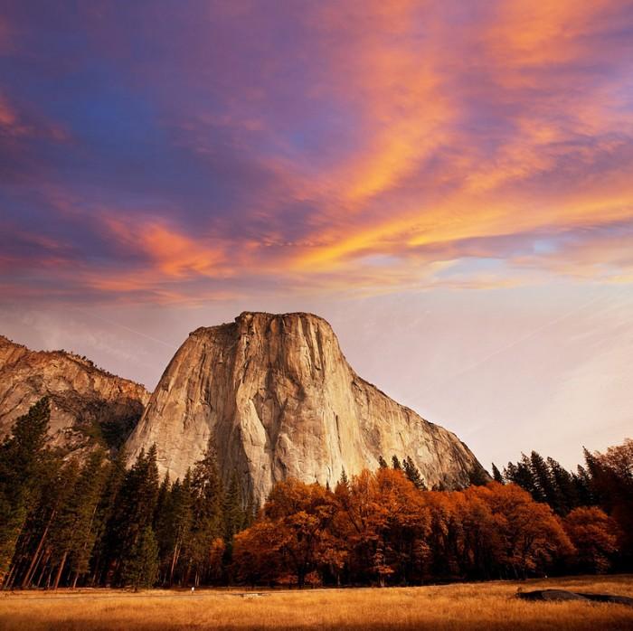 Best Road Trip Destinations: Yosemite