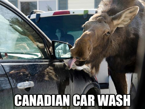 best car memes canadian car wash