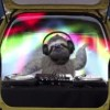 Weird Fiat commercials