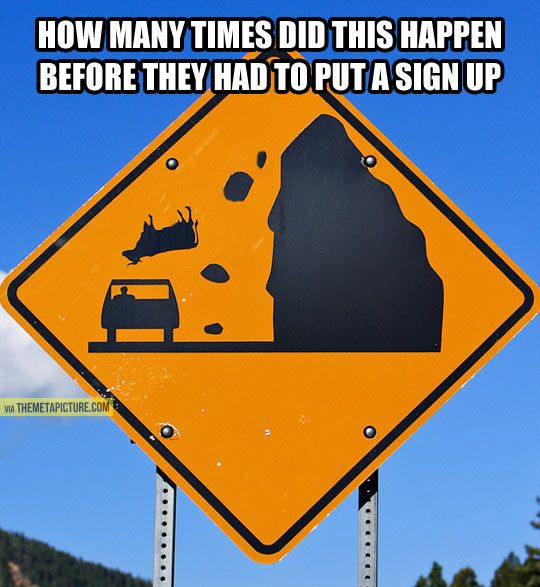 Best Car Memes falling cows