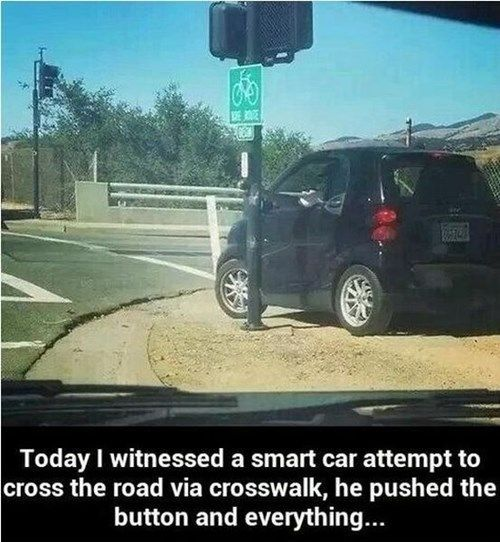 best car memes
