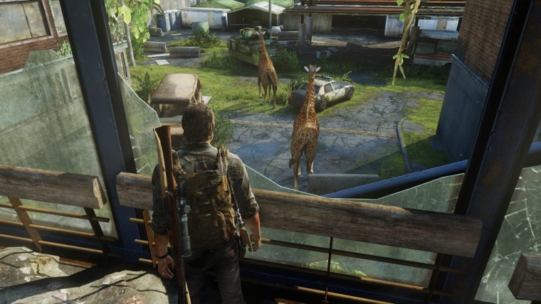 If Joel was Dremiel Byers, he would have already killed and eaten an entire giraffe.