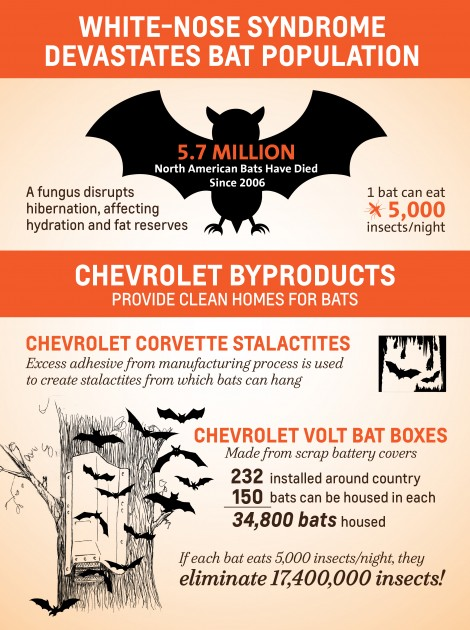Corvette Byproducts for Artificial Bat Caves