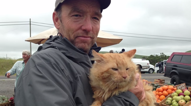 Charles the cat, seen here in a rare behind-the-scenes photo