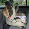 where should I install my child's car seat?
