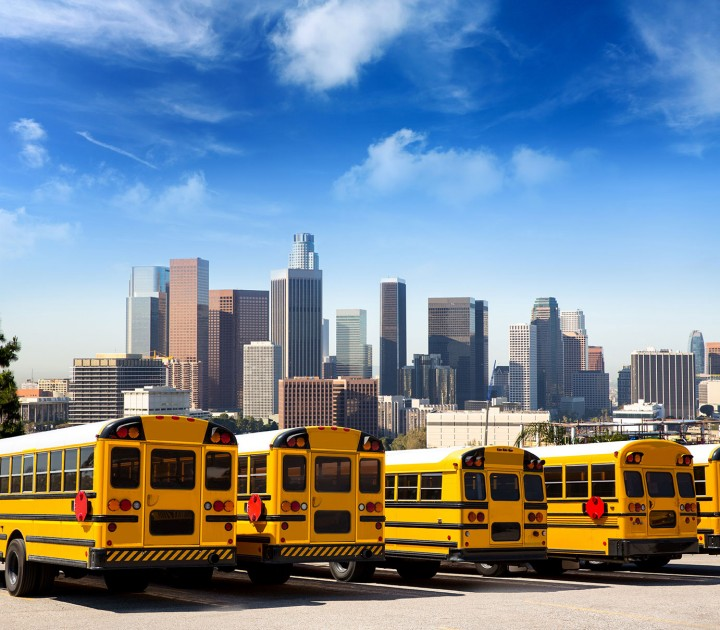 school bus safety tips for drivers