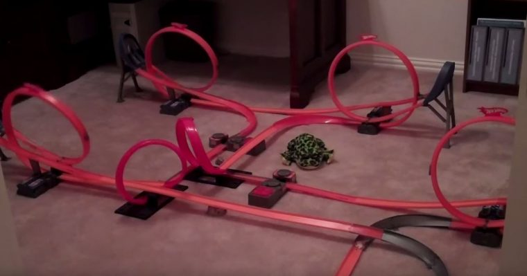 coolest hot wheels tracks ever built
