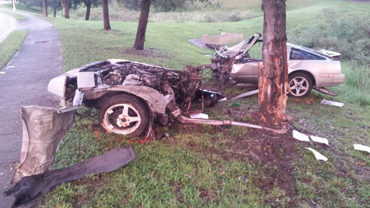 Crashed Nissan with surprisingly strong tree
