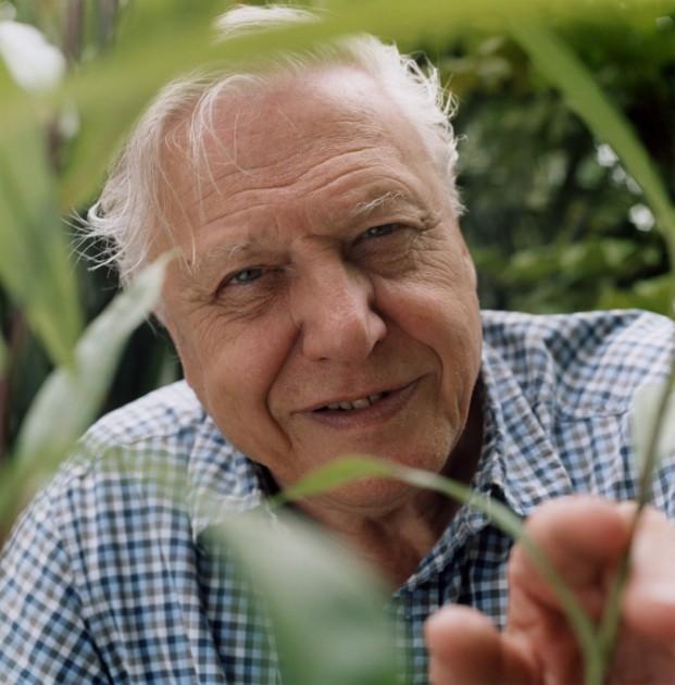 Sir-David-Attenborough