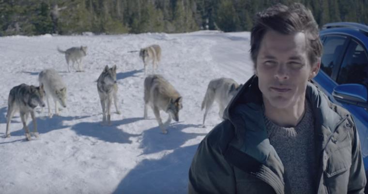 James Marsden wolves toyota rav4 hybrid