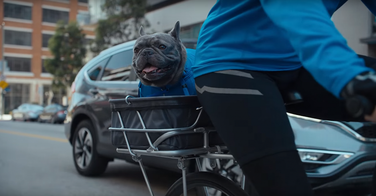 2016 Honda CR-V commercial with a little dog in it