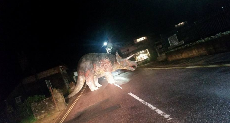 Triceratops in Middle of Road