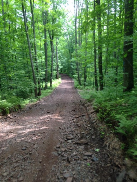 Florence County ATV trails