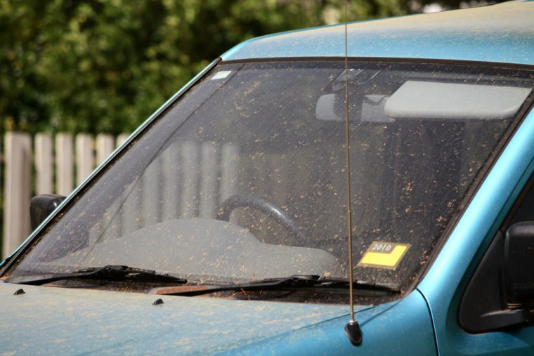 Car Windshield Cleaner >> How to Remove Dead Bugs from Your Car's Windshield - The