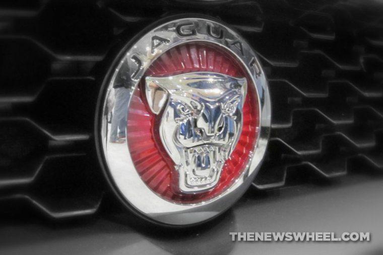 new jaguar badge logo growling face