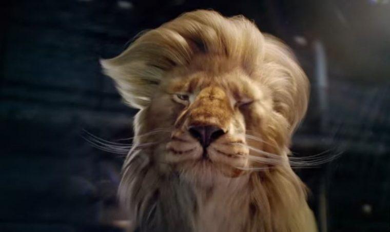 racing-faces-donald-trump-lion