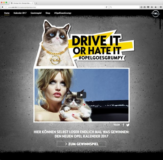 Opel Grumpy Cat Calendar social media campaign
