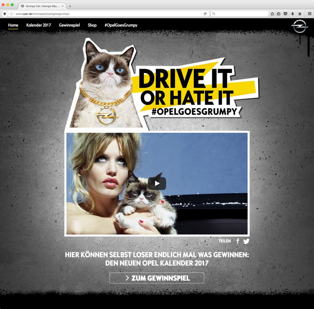i read opel's grumpy cat press release so you don't have to - the