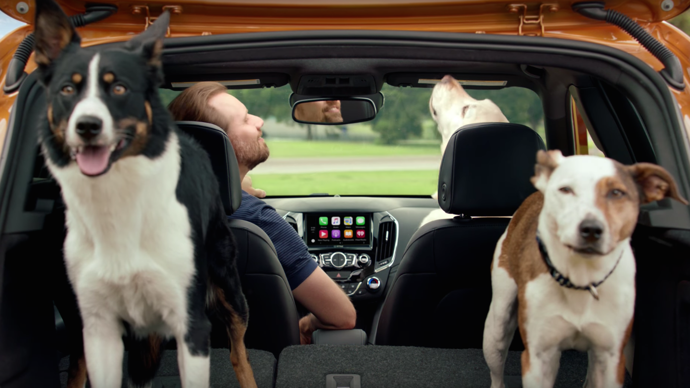 """New Chevy Cruze Hatchback commercial, """"Real Dogs Not Actors"""""""